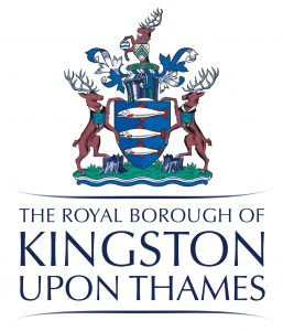 New Initiatives and Your Kingston Grants
